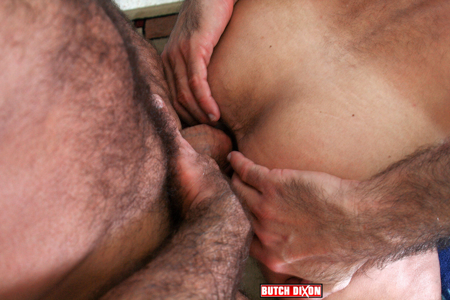 Butch Dixon Jeff Grove and Josh Ford Hairy Daddies Fucking with this Hairy Daddy Cock 10 Jeff Grove and Josh Ford:  Amateur Hairy Daddies Barebacking