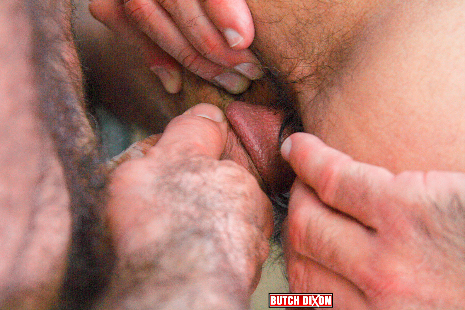 Butch Dixon Jeff Grove and Josh Ford Hairy Daddies Fucking with this Hairy Daddy Cock 11 Jeff Grove and Josh Ford:  Amateur Hairy Daddies Barebacking