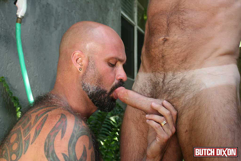 Butch-Dixon-Jake-Marshall-and-Marco-Rios-Silver-Daddy-Fucks-His-Cub-Amateur-Gay-Porn-13 Muscle Silver Daddy Jake Marshall Fucks His Younger Hairy Boyfriend