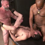 Raw and Rough Jake Wetmore and Dusty Williams and Kid Satyr Bareback Taking Raw Daddy Loads Cum Amateur Gay Porn 03 150x150 Hairy Pup Taking Raw Interracial Daddy Loads Bareback